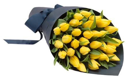 Yellow Tulips Wrapped in Blue