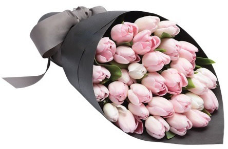 Light Pink Tulips Wrapped in Black
