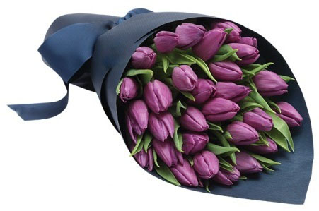 Purple Tulips Wrapped in Blue