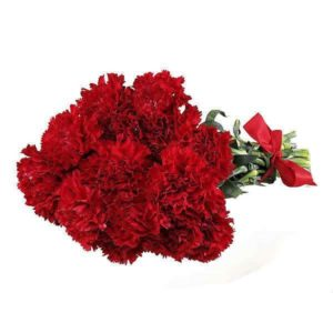 Condolonces Carnations Bouquet