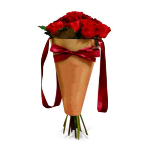 Red Roses Cone Bouquet