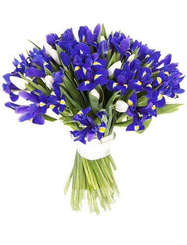 Blue and White Surprise Bouquet