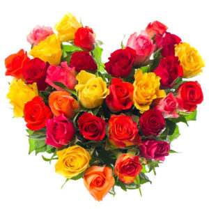 Multicolored 31 Roses Heart