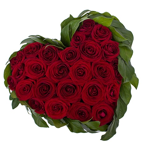 My Heart Red Roses