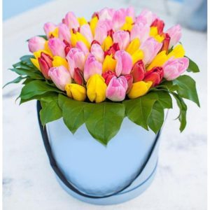55 Multicolored Tulips Hat Box