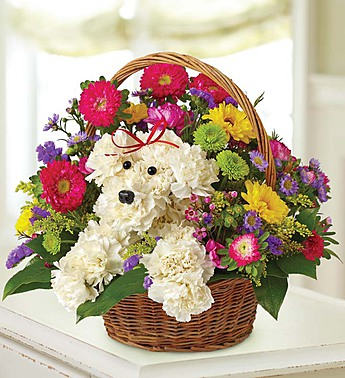 Adorable Puppy Basket