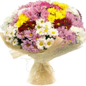 Chrysanthemums Field Bouquet
