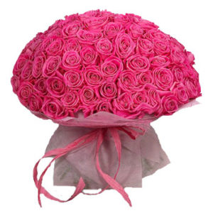 Pink Princess 71 Roses Bouquet