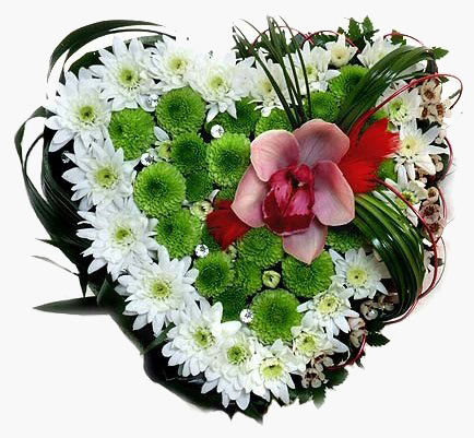 Chrysanthemums and Orchids Heart