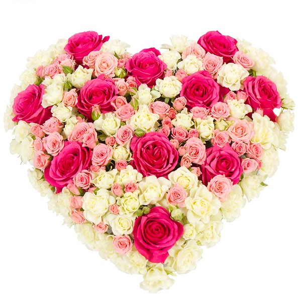 Pink Variety Roses Heart