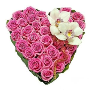 Romantic Pink Roses Heart